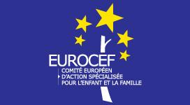 EUROCEF ACTIVITY 2013-2014
